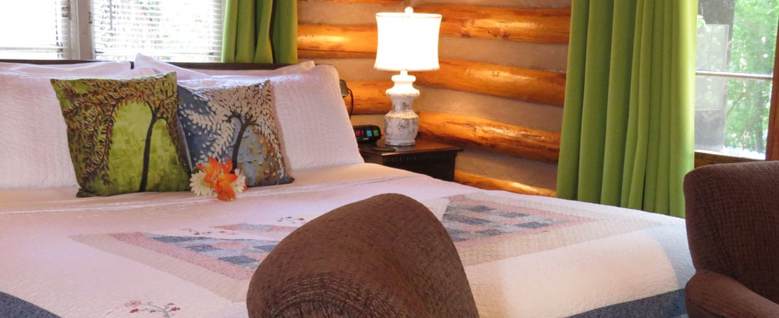 Cabin 6 Pillows