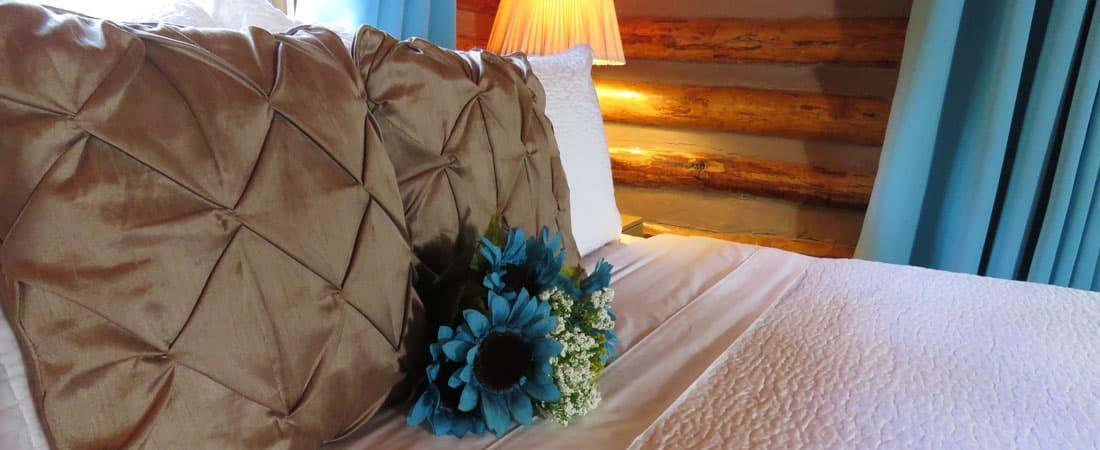 Cabin 5 Pillows