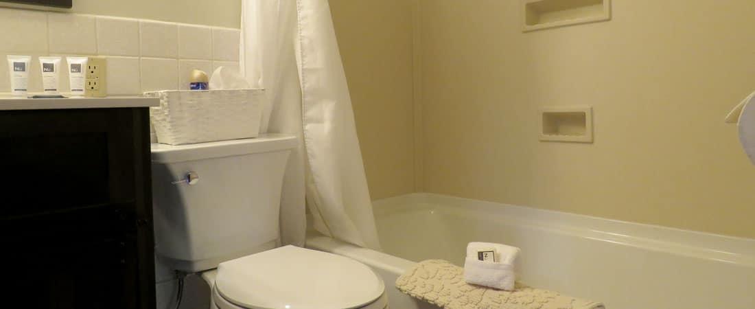 Cabin 10 Bathroom